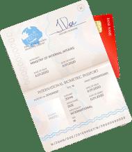 rus visa